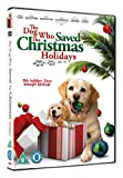 The Dog Who Saved The Christmas Holidays [DVD]