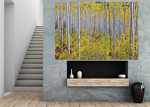 startonight-parete-art-photo-decor-giallo-medio-in-my-room-da-2-by-6-feet-murale-da-parete-per-salot