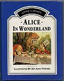 Alice in Wonderland (Little classics)