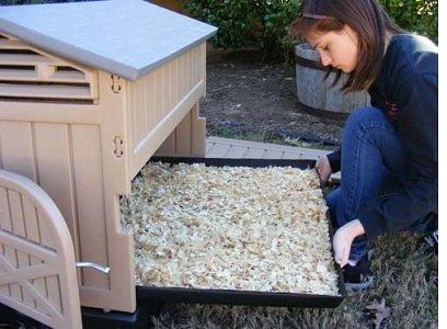 Blueridgepetcenter snap lock chicken coops double wall for Maintenance free chicken coop