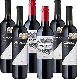 Argentinisches Rotweinpaket