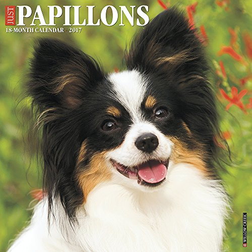 Just Papillons 2017 Wall Calendar (Dog Breed Calendars)