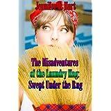 Swept Under the Rug (Laundry Hag Series, Book 2) ~ Jennifer L. Hart