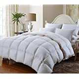 1200 Thread Count Queen 1200TC Siberian Goose Down Comforter 750FP, White 1200 TC