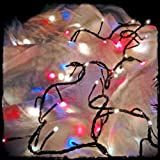 Fourth of July Lights - Red, White, and Blue 80 Bulb, Multi-function Plug-in String Lights (20 Feet)