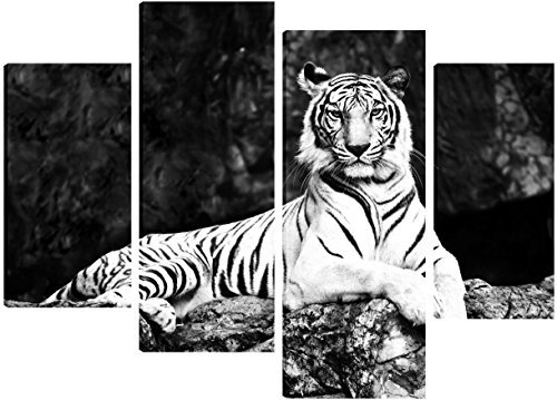 black-and-white-picture-of-a-white-tiger-canvas-4-split-panel-design-71cm-x-101cm-free-hanging-kit-i