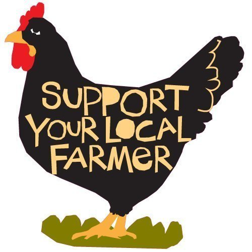 bumper-sticker-support-your-local-farmer-chicken-decal-bumper-sticker-die-cut