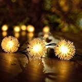 Loende Outdoor Solar String Lights, 50 LED 23FT Waterproof Fairy Dandelion Ball, Perfect for Home, Garden, Bedroom, Yard, Patio, Tree, Wedding, Holiday Decorations (8 Modes Warm White)