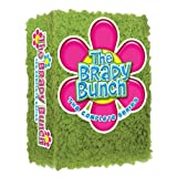 The Brady Bunch: The Complete Series with Shag Carpet Cover ~ Robert Reed