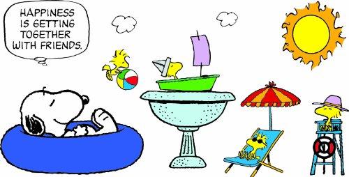 Eureka Peanuts Summer Fun Bulletin Board Set front-894567