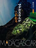 マダガスカルがこわれる