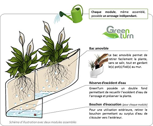 modul green pot pour plantes mural design int rieur ext rieur vert. Black Bedroom Furniture Sets. Home Design Ideas