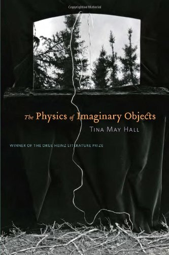 The Physics of Imaginary Objects