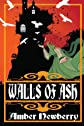 Walls of Ash (Daughters of Rhineholt)