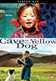 cover of The Cave of the Yellow Dog [2005]