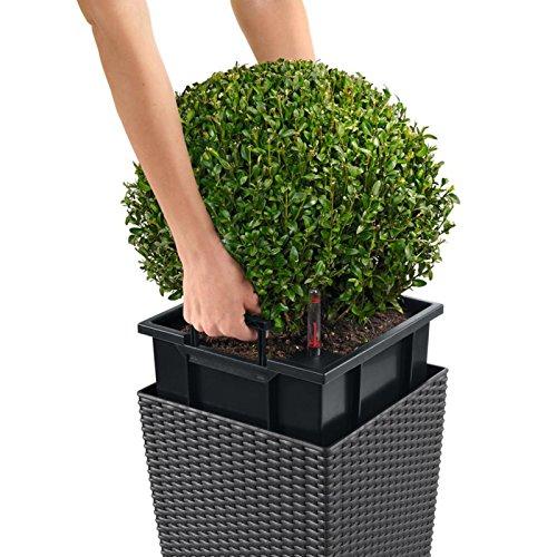 lechuza cube cottage 40 vaso in resina per piante set. Black Bedroom Furniture Sets. Home Design Ideas