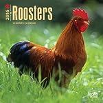 Roosters 2016 Calendar