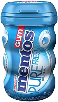 Mentos Gum Big Bottle Fresh Mint