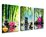 Wall Art Zen Canvas Painting Black Massage Stone Green Bamboo Pink Waterlily Frangipani Pictures Prints Framed Ready to Hang 3 Panels Extra Large Contemporary Painting for Hom Office Decoration