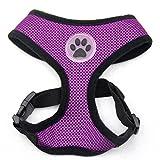 BINGPET BB5001 Soft Mesh Dog Harness Pet Walking Vest Puppy Padded Harnesses Adjustable , Purple Medium