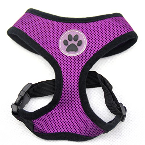 BINGPET BB5001 Soft Mesh Dog Harness Pet Walking Vest Puppy Padded Harnesses Adjustable , Purple Small (Girl Dog Harness compare prices)