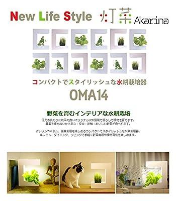 灯菜 ココ(Coco) Oma14 ホワイト 63-1770-93