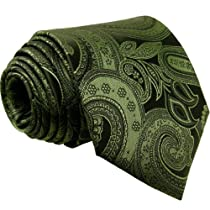 Shlax & Wing Men Ties Neckties Paisley Dark Green 100% Silk Jacquard Woven New