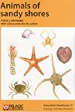 img - for Animals of Sandy Shores (Naturalists' Handbooks) book / textbook / text book