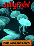 Jellyfish! Learn About Jellyfish and Enjoy Colorful Pictures - Look and Learn! (50+ Photos of Jellyfish)