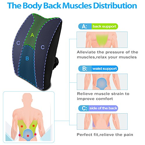 chair inserts for back support. Memory Foam 3D Ventilative Mesh Lumbar Support Back Cushion Pillow To Properly Align The Spine And Ease Lower Pain With Insert Strap For Home Chair Inserts
