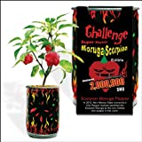 Moruga Scorpion Pepper - Grow Your Own Hottest Pepper in the World! - 2 Million Scoville Units