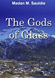 img - for Gods of Glass book / textbook / text book