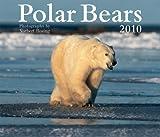 Polar Bears 2010 Calendar