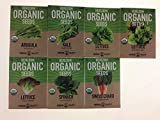 Search : Organic, Heirloom, Non-GMO, Garden Seeds - 7 Varieties of Vegetable Leafy Power Greens - Arugula, Kale, Lolla Rossa Lettuce, Buttercrunch Lettuce, Gourmet Mix Lettuce, Spinach, Swiss Chard