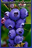 Blueberries in Your Backyard: How to Grow Americas Hottest Antioxidant Fruit for Food, Health, and Extra Money
