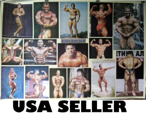 Bodybuilding collage poster with Arnold Schwarzenegger & others 15 flex poses 34 x 23.5 inches (poster sent from USA in PVC pipe)