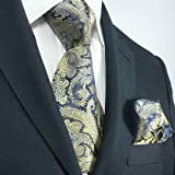 Landisun 16K Navy Blue Gold Paisleys Mens Silk Tie Set: Tie+Hanky &Plastic Hook