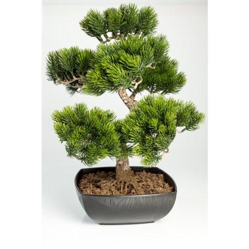 Knstliche-Bonsai-Pinie-in-Schale-mit-210-Spitzen-50-cm-outdoor-hochwertiger-Kunstbonsai-Kunststoff-Bonsai