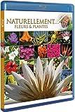 echange, troc Antoine - Naturellement... - Fleurs & plantes [Blu-ray]