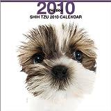 THE DOG シー・ズー 2010年 カレンダー