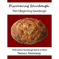 Discovering Sourdough Part I Beginning Sourdough