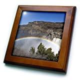 3dRose ft_90005_1 Rainbow, Shoshone Falls, Twin Falls, Idaho - US13 DFR0445 - David R. Frazier - Framed Tile, 8 by 8-Inch