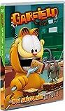 Image de Garfield & Cie - Vol. 16 : Un régime au poil !