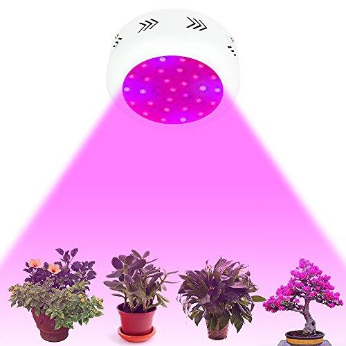 Morsen-LED-Mini-UFO-300w-600W-900W-Double-Chips-LED-Grow-Light