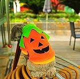 (マイホット)MyHot犬猫ペットもハロウィンかぼちゃコスプレコスチューム服衣装L