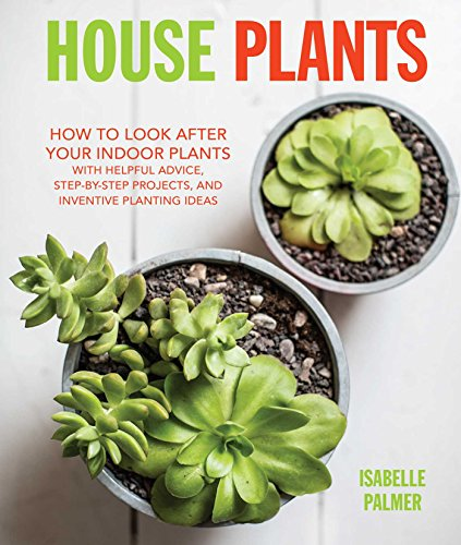 house-plants-how-to-look-after-your-indoor-plants-with-helpful-advice-step-by-step-projects-and-inve