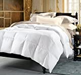 SNOOPY Homme Swan De Ville Ultra Soft Micro Fiber Mix Double Bed Comforter (250 GSM Filling)