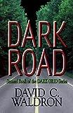 Dark Road (The Dark Grid Series Book 2)