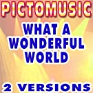 What a Wonderful World (Karaoke Version In the Style of Louis Armstrong)