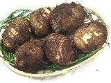 九州産 新物 里芋(さといも・サトイモ)1kg  九州の安心・安全な野菜! 【九州・宮崎産・熊本産・大分産】